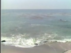caribbean cruising - scene 2