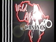 wild africa canings: mmf prison punishment