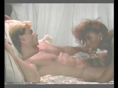 francois papillon - perky x miss (1986)