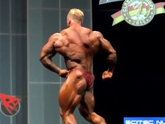 musclebull dennis: 2014 arnold classic europe